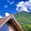 Stock Photo: Mountain village in summer