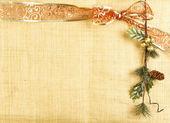 Tarjeta de navidad con cinta roja y rama — Foto de Stock