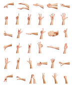 Collage of hands on white backgrounds — Stock Photo