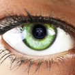 Girl's green eye close up with skull reflected  green eye close  — Stock Photo