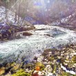 River in winter season — Stock Photo