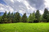 Cloudy mountain valley — Stock Photo