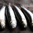 Sardines close up — Stock Photo