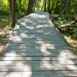 Wooden path through forest. in krka national park, croatia - Stock Photo