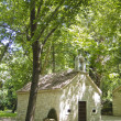 Small stone church in the forest — Photo