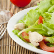 Fresh salad with chicken and tomatoes — Stock Photo #14536057