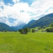 Panoramic view of a mountain meadow — Stock Photo