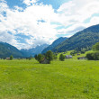 Panoramic view of a mountain meadow — Foto de Stock