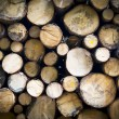 Background of dry chopped firewood logs stacked up on top of eac - Stok fotoğraf