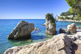 Mediterrean rocky beach in trieste italy — Stock Photo