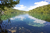 Plitvice lakes national park in Croatia, nature travel backgroun — Stock Photo