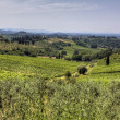 Tuscany landscape — Stock Photo #14545891