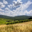 Tuscany landscape — Stock Photo #14546169