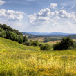 Tuscany landscape — Stock Photo #14546345