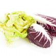 Red and green chicory radicchio isolated over white — Stock Photo #15889021