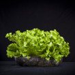 Fresh green lettuce on black background — Stock Photo