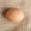 Egg laying on jute — Stock Photo