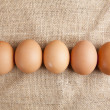 Line of eggs laying on jute - Stock Photo