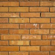 Brick wall background — Stock Photo #23099018