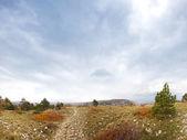 Sökväg i kars skogen i hösten — Stockfoto