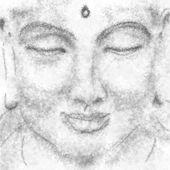 Portrait of meditating yogi — Stock Photo