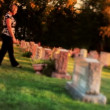 Woman Visits Grave in Cemetery — Stock Video #12807170
