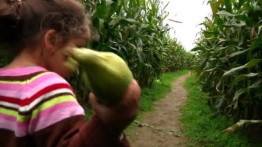 A little girl walks through a corn maze — Vídeo de stock