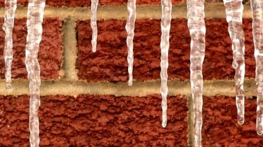Dripping icicles.