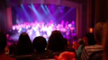 Audience members applaud at a stage show. — Stock Video #16902607