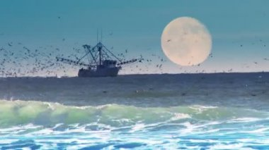 Commercial Fishing Boat — Vídeo stock