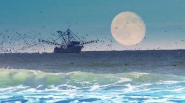 Komerční rybářský člun — Stock video