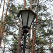Lamp in park — Stock Photo #14386289