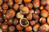 Nut filbert — Stock Photo