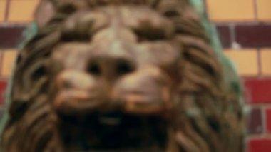 Lion's head fountain — Stock Video