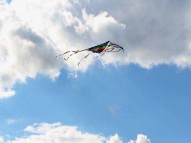Flying kite — Stock Video
