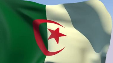 Flag of Algeria — Stock Video