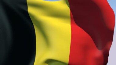 Flag of Belgium — Stock Video