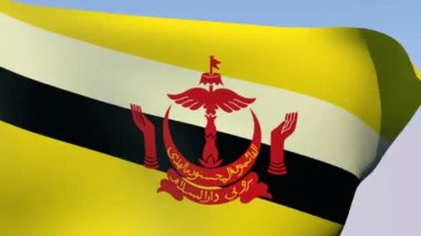 Flag of Brunei — Stock Video