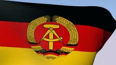 Flag of German Democratic Republic (DDR) — Stock Video