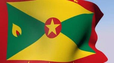Flag of Grenada — Stock Video