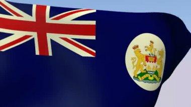 Flag of Hong Kong 1959 — Stock Video