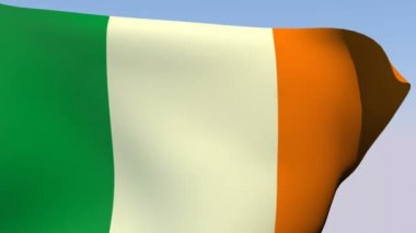 Flag of Ireland — Stock Video