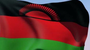 Flag of Malawi Republic — Stock Video