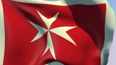 Flag of Malta — Stock Video