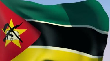 Flag of Mozambique — Stock Video