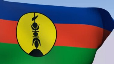 Flag of New Caledonia — Stock Video