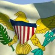 Flag of Virgin Islands United States — Stock Video