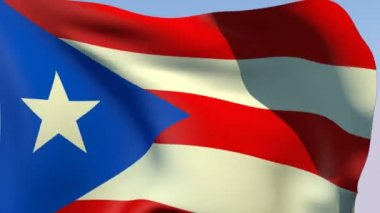 Flag of Puerto Rico — Stock Video