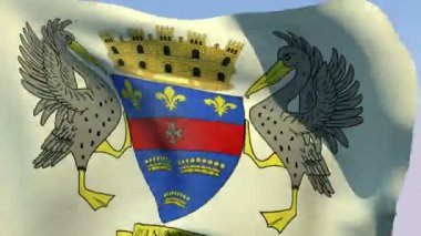 Flag of Saint Barthelemy (unofficial) — Stock Video