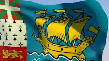 Flag of Saint-Pierre and Miquelon — Stock Video